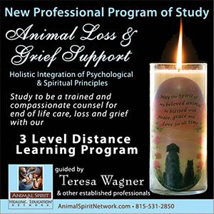 ASN Loss Program 1