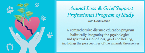 Animal Loss and Grief Support Professional Program of Study