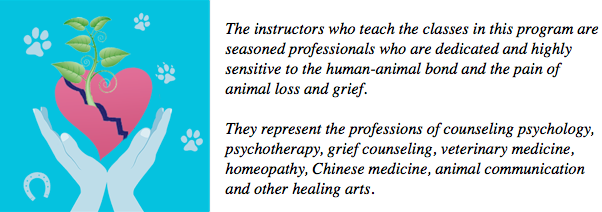 Animal Loss and Grief Support Professional Program of Study with ...