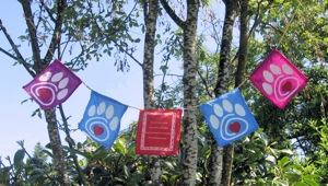 Product-prayer-flags_300px