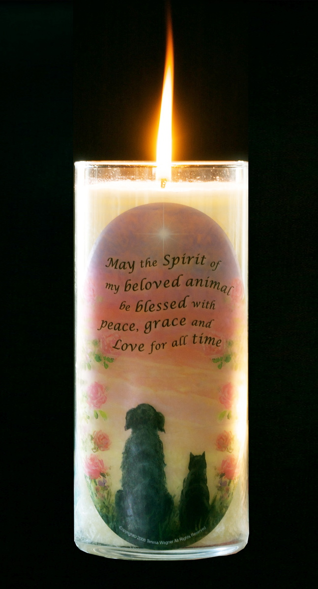 Candles : In Memory of a Pet: Pet Loss Memorial Candle